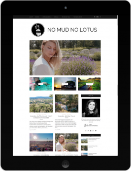 Homepage of No Mud No Lotus